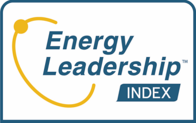 Energy-Leadership-index-Assessment